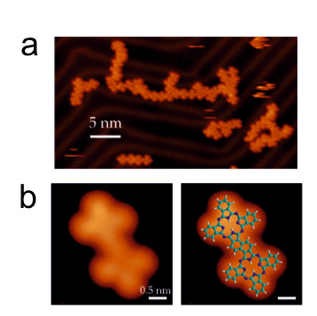 a) STM image displaying the formation of quasi-unidimensional polymers. b) STM image and models of the majority of products between coupled monomers.