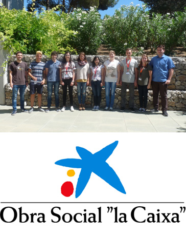 ICIQ summer fellows